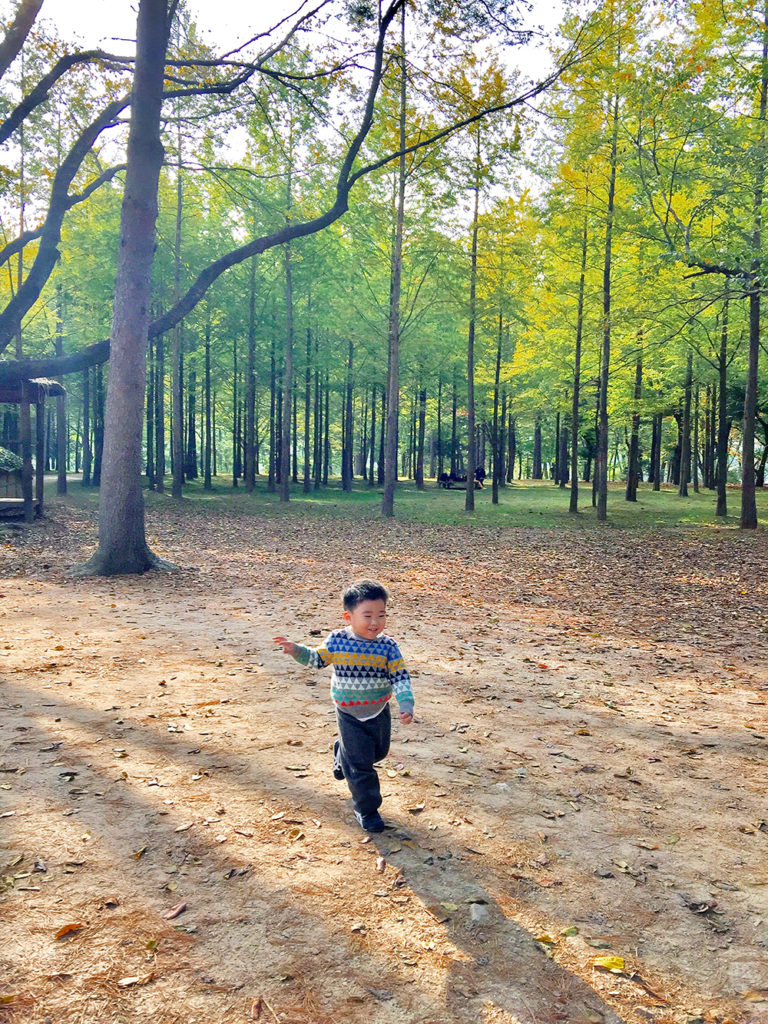 Treating as his playground